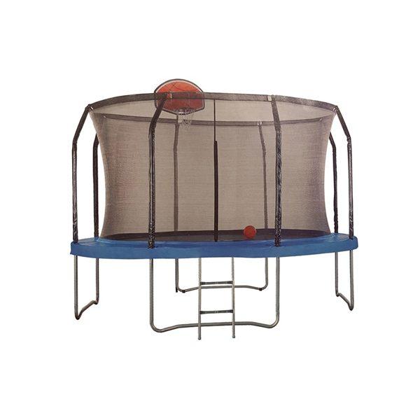 Batutas 305cm su tinklu kopėčiomis ir krepšinio lenta